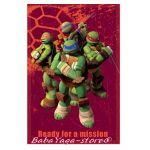 Детско одеяло Костенурките НИНДЖА Turtle fleece blanket mission, 7207