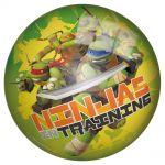 Ball 23cm John, Turtle Ninja, 50939