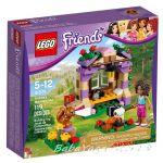 ЛЕГО ФРЕНДС Планинската хижа на Андреа, LEGO Friends Andrea's Mountain Hut, 41031